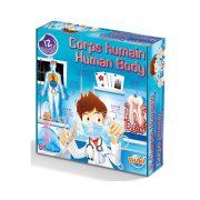 esperimenti scientifici giocattolo corpo umano